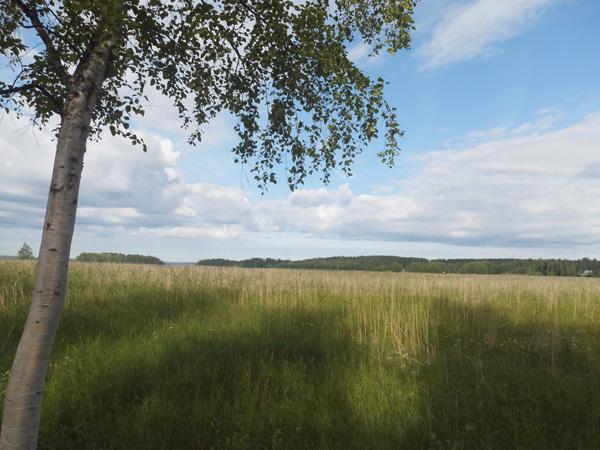 フィンランドヨエンスー公園